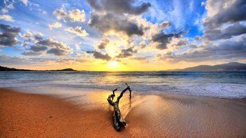 Бесплатные фото берег,песок,коряга,озеро,горизонт,горы,солнце