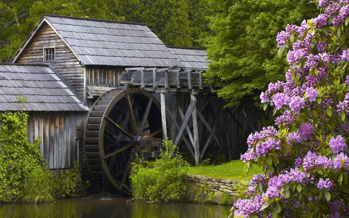 Фото бесплатно мельница водяная, сооружение, колесо, река, деревья, трава, цветы, пейзажи