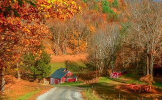 Заставки Вермонт,Осень,Брук-Фарм,осень,дорога,дома,деревья