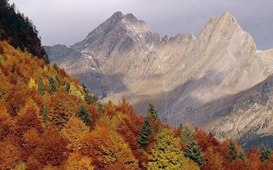 Фото бесплатно осень, деревья, листва, цветная, горы, скалы