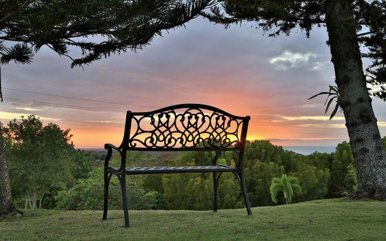 Бесплатные фото скамейка,парк,дерево,закат