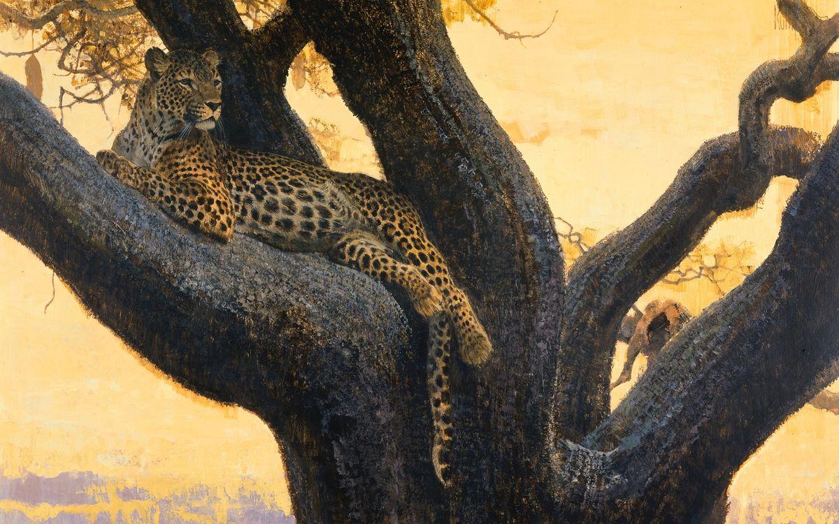 Фото бесплатно дерево, дикая кошка, леопард, морда, лапы, хвост, шерсть, окрас, рендеринг