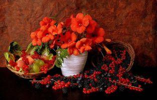 Обои цветы, фрукты, ваза, ягоды, натюрморт