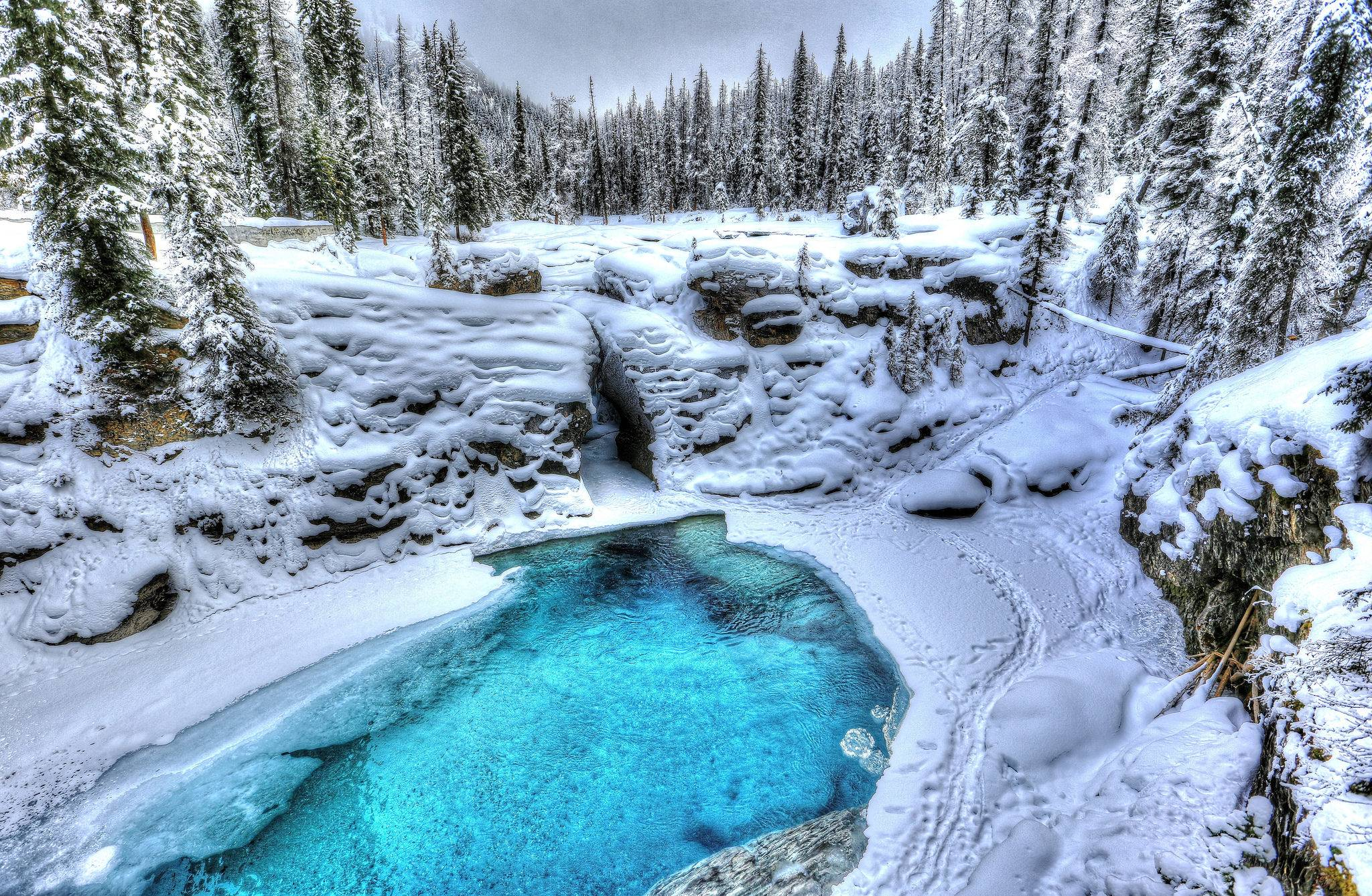 зима, водоём, деревья