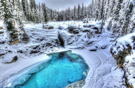 Бесплатные фото зима,водоём,деревья,Альберта,Канада,пейзаж