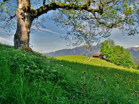 Бесплатные фото Garmisch Partenkirchen,Germany,Гармиш Партенкирхен,Германия,поле,холмы,горы,пейзаж