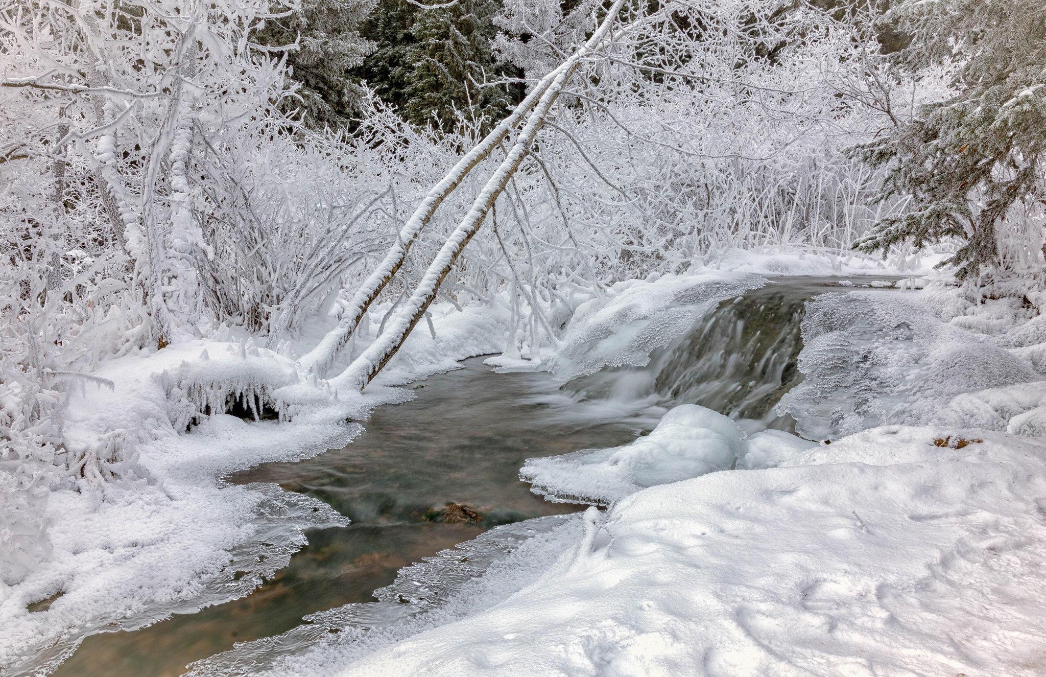 обои зима, река, снег, лес картинки фото