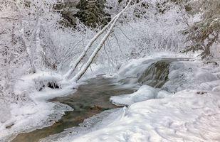Бесплатные фото зима,река,снег,лес,деревья,природа