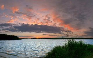 Бесплатные фото берег,растительность,озеро,небо,облака,закат
