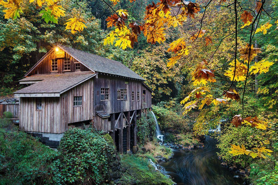 Фото бесплатно осень, река, Вашингтон - на рабочий стол