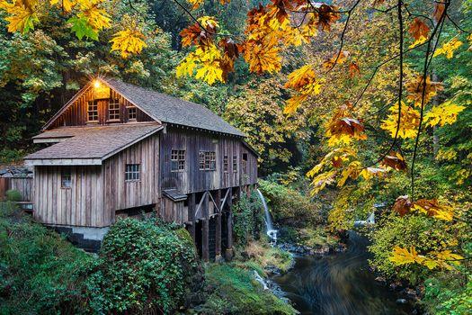 Photo free autumn, river, Washington