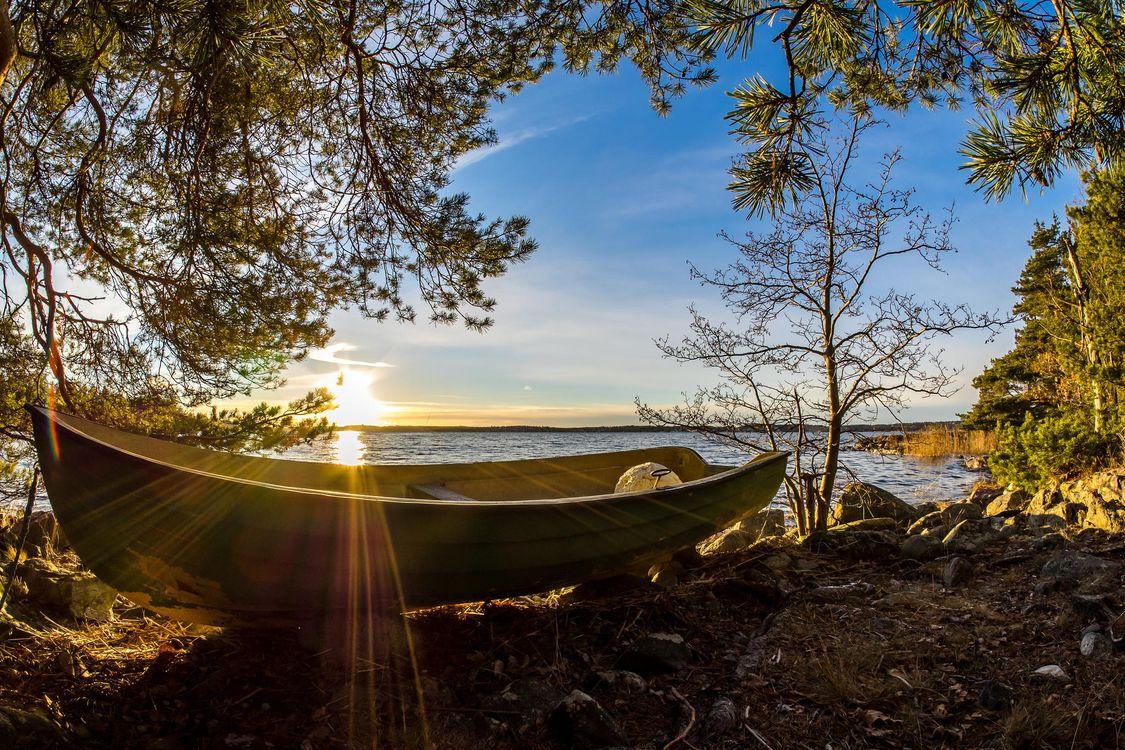 Фото бесплатно рассвет, озеро, берег, лодка, лучи солнца, деревья, пейзаж, пейзажи