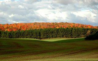 Фото бесплатно осень, поле, лес, деревья, листва, цветная, небо, облака