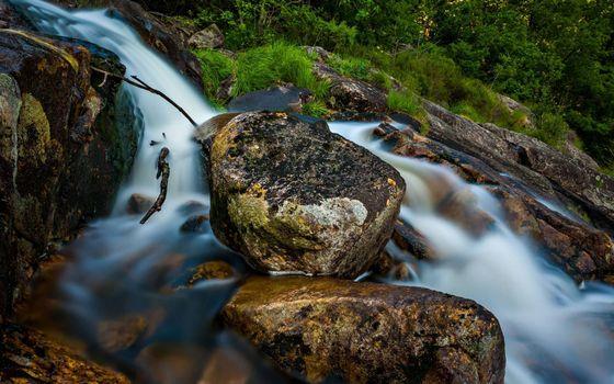 Бесплатные фото ручей,течение,камни,трава,кустарник