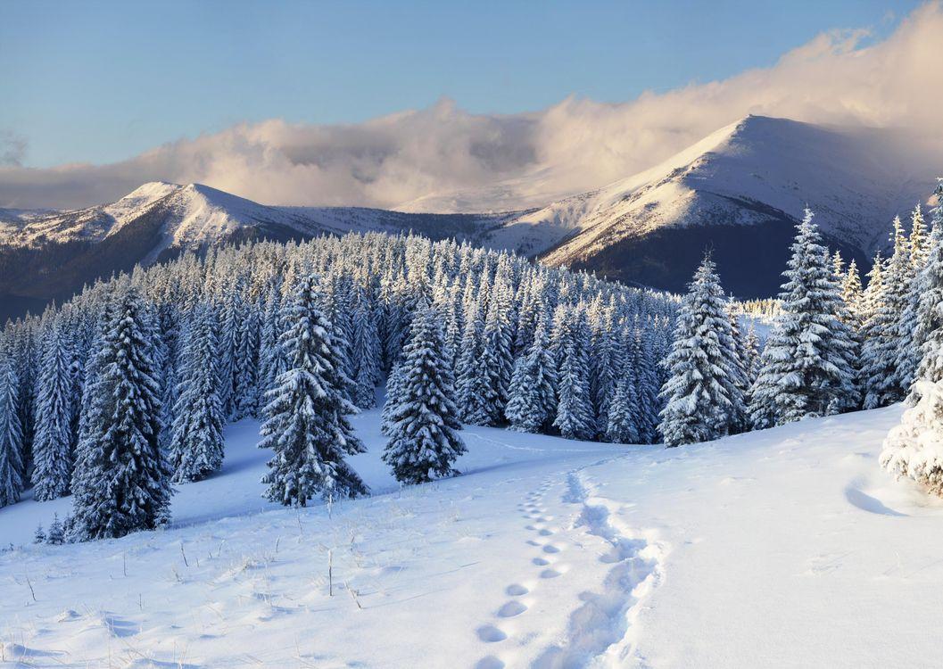 Фото бесплатно горы, пейзаж, тропинка - на рабочий стол