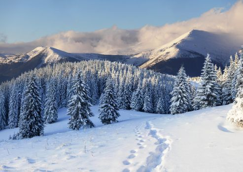 Фото бесплатно горы, пейзаж, тропинка