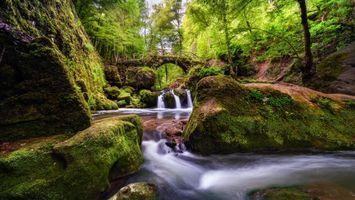 Бесплатные фото Мюллерталь,Люксембург,Швейцария,водопад,река,мост,деревья