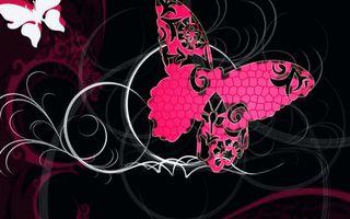 Бесплатные фото бабочки,узоры,линии,фон черный
