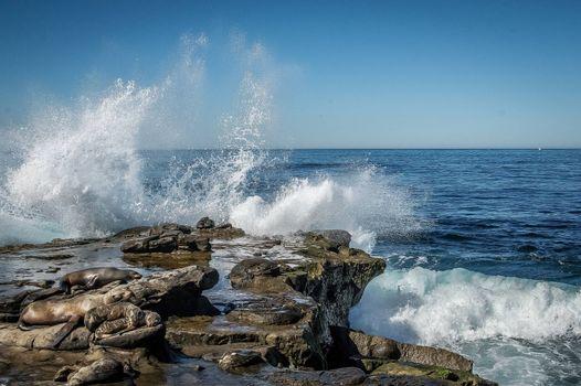Photo free La Jolla, California, sea