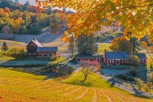 Фото бесплатно Вермонт, дома, деревья