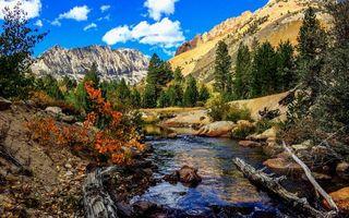 Бесплатные фото река,течение,камни,старые деревья,бревна,горы,холмы