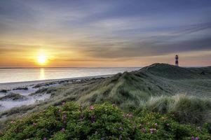 Бесплатные фото закат,море,маяк,берег,цветы,пейзаж