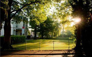Фото бесплатно ограждение, деревья, двор