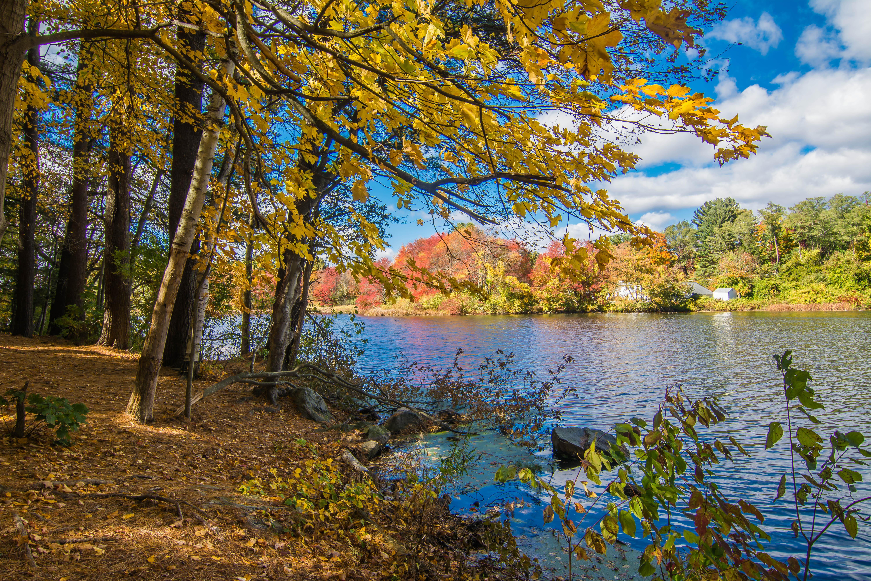 обои Садбери, Массачусетс, осень, река картинки фото