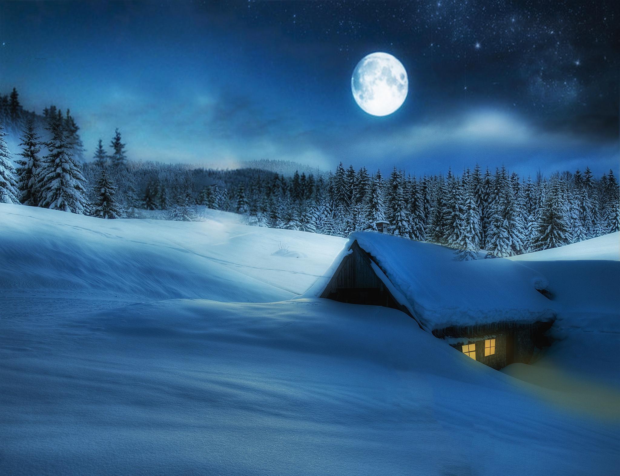 обещали привезти лунная зимняя ночь картинки коров'яче один найкорисніших