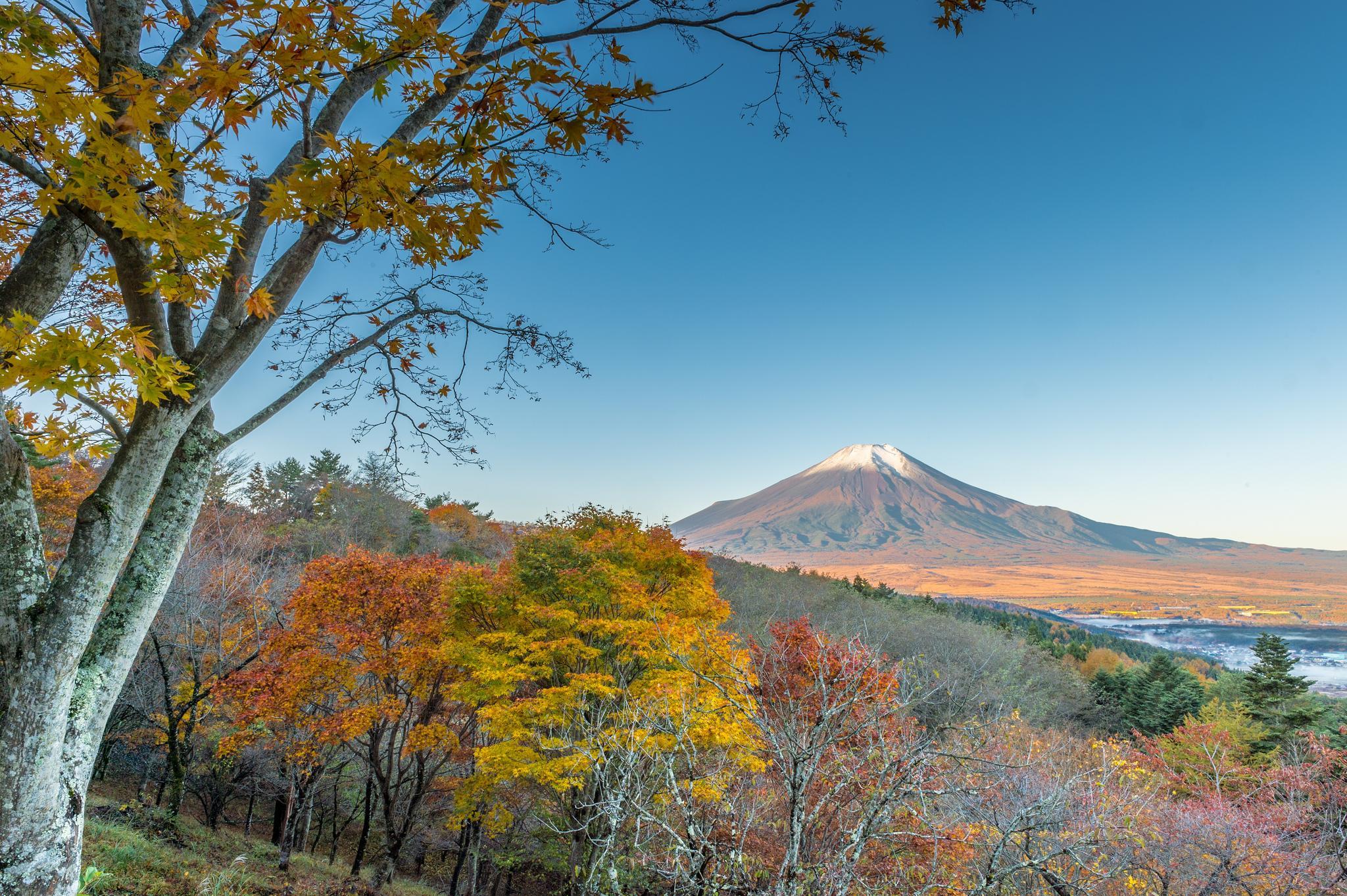 Хонсю, Япония, Яманаси