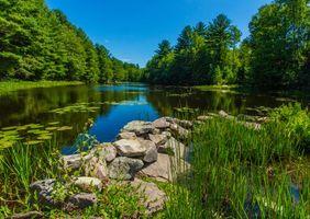 Фото бесплатно река, деревья, камни