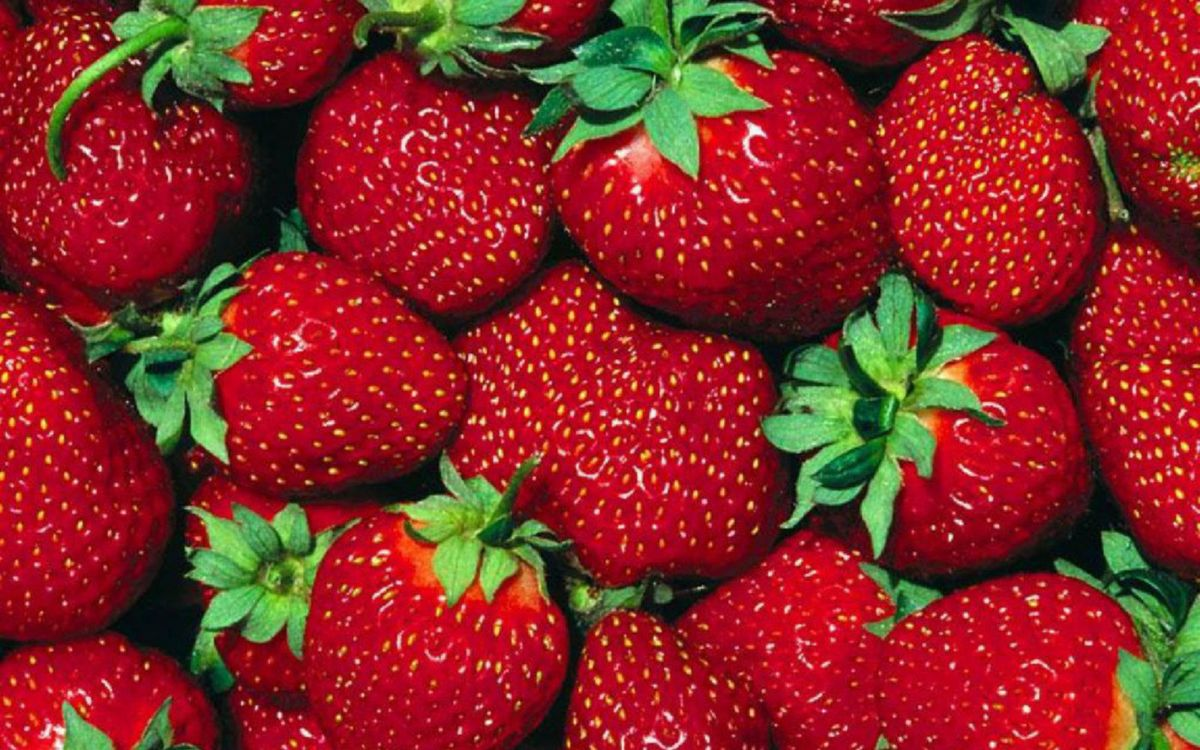 Фото бесплатно ягода, клубника, красная, спелая, хвостики, зеленые, еда - скачать на рабочий стол