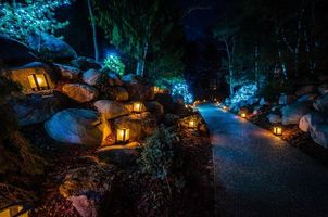 Фото бесплатно Dow Gardens, Christmas ночь, парк