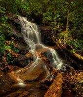 Бесплатные фото Log Hollow Branch Falls,Pisgah National Forest,North Carolina