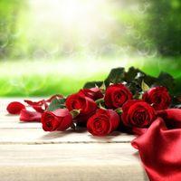 Фото бесплатно красивые цветы, букет, розы