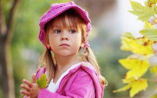 Бесплатные фото девочка,косички,кепка,шапка,куртка,розовые,листья