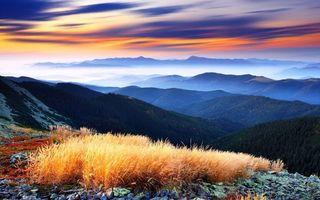 Бесплатные фото гор, лес, трава, камни