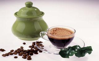 Бесплатные фото чашка,стеклянная,кофе,зерна,листья,сахарница