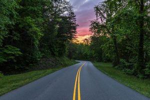 Бесплатные фото Грейт Смоки Национальный парк,дорога,лес,деревья,закат,пейзаж