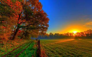 Бесплатные фото дорога,деревья,ограда,поле,небо,солнце,закат