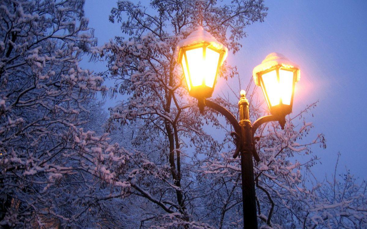 Фото бесплатно зима, вечер, деревья, ветви, иней, фонарь, свет, пейзажи