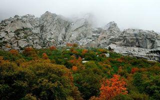 Фото бесплатно осень, горы, деревья, скалы, камни, облака