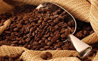 Бесплатные фото мешок,совочек,сталь,кофе,зерна
