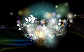 Бесплатные фото рисунок,цветы,черный,фон,вспышки,линии