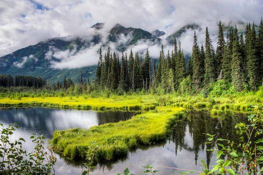 Alaska, озеро, горы, деревья, пейзаж