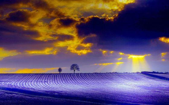Фото бесплатно поле, облака, солнце