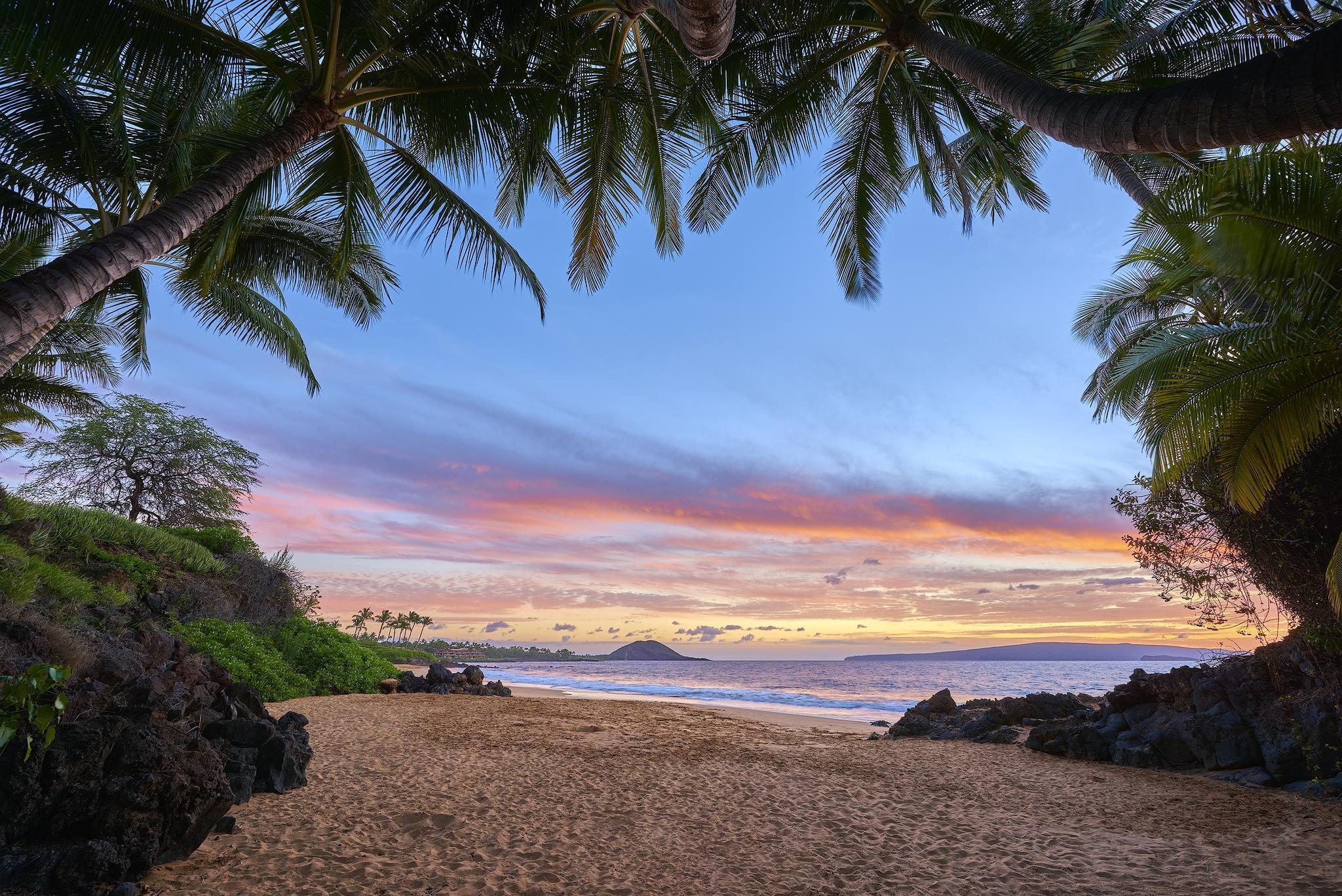 обои закат, море, пальмы, пляж картинки фото