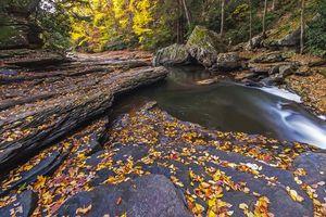 Бесплатные фото осень,лес,скалы,деревья,речка,ручей,природа
