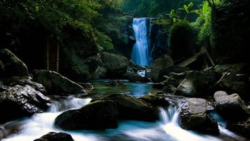 Бесплатные фото река,камни,обрыв,водопад,лес,растительность
