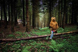 Фото бесплатно медведь, волк, мальчик, лес, деревья, споси меня миша, меня волк съесть хочет